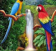 MACAW TROPICAL PARROTS by GLENN HOLBROOK