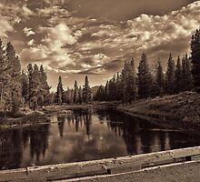 Polecat Creek Crossing (bw) by Brenton Cooper