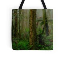 RainForrest Dreaming - Mount Wilson NSW - The HDR Experience Tote Bag