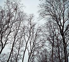 Morbid by Matti Ollikainen
