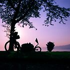 Montreux, Switzerland, July 2007 by tomsbiketrip