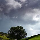Approaching Storm at Keld in Swaledale by Martin Lawrence