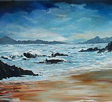 Roaring water Bay by Conor Murphy