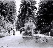 Cyclists in Stanley Park by boogeyman