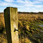 The Gatepost by Ralph Goldsmith