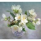Mock Orange Blossoms by LouiseK