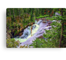1st Tier of Terraced Falls Canvas Print