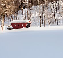 Kent Falls Covered Bridge  by Bill Wakeley