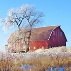 Frosted Country Morning by lorilee