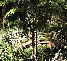 Japanese Bridge Tamborine Mountian Botanical Gardens Qld by Virginia  McGowan