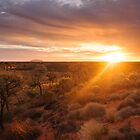 Sunrise at Ayers Rock | Uluru by Julie Thomas