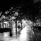 Wet night by John Holding