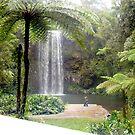 Millaa Millaa Falls far NQ. by MardiGCalero