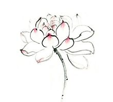 TRANDITIONAL CHINESE PAINTING - LOTUS by deviloblivious