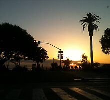 Santa Monica Sunset! by Jennifer Patterson