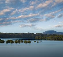 The Mighty Nambucca River by DonnaLB