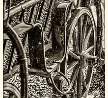 Old carriage by Dobromir Dobrinov