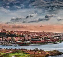 Istanbul  by Dobromir Dobrinov