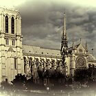 Notre Dame by Country  Pursuits