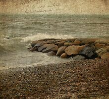 A Jetty And A Stony Beach by MotherNature2