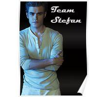 Team Stefan Poster
