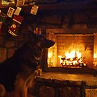 Enjoying the warmth of the fire by jeanlphotos