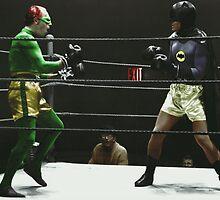 Batman and Riddler: Fight Night by Stewart Leach