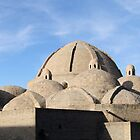 Bazaar Dome Skyline, Bukhara, Silk Road by Jane McDougall