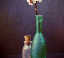 Glass bottles with winter blossom by Sybille Sterk
