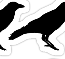 Attempted Murder - Crow Sticker