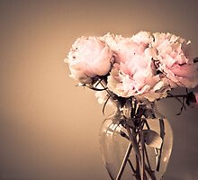 Peonies in a vase by KSKphotography