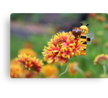 Bee Girl - Buzzing around the bee-utiful garden Canvas Print