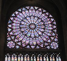 Notre Dame Stained Glass by sunsetgirl