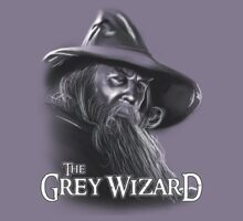 The Grey Wizard by odysseyroc