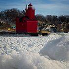 Big Red Winter  by Roger  Swieringa