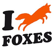 I Love Foxes by Style-O-Mat