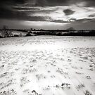 The Desolation of White BW by Andy Freer