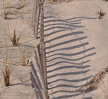 dune fence by telley20