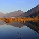 Reflections in the lake  by annalisa bianchetti