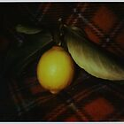 fallen fruit on fleece by Jill Auville