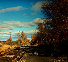""" The Sunny Side Of The Tracks "" by Gail Jones"