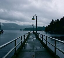 Gloomy Deep Cove by Jessica de Vries