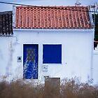 Casa Azul  by Paulina Fadrowska