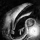 Gulper eel by didelphis