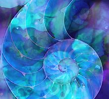 Blue Nautilus Shell By Sharon Cummings by Sharon Cummings