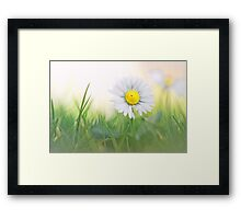 Natural born beauty... Framed Print
