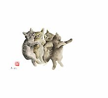 Cat Cats Photo Picture Brown Gray Little Funny Pic Meow by Johana Szmerdt