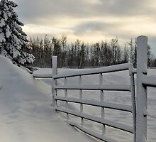 Winter Gateway by Betty MacRae