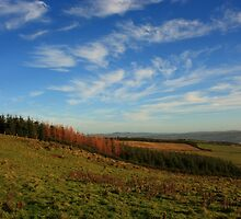 On Croaghan Hill by Adrian McGlynn