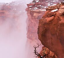 Atop Canyonlands by Chad Dutson